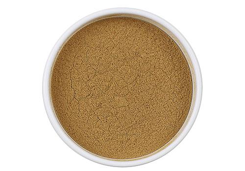 Ocimum tenuiflorum